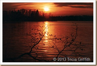 Beaver Lake Sunset - Tricia Griffith